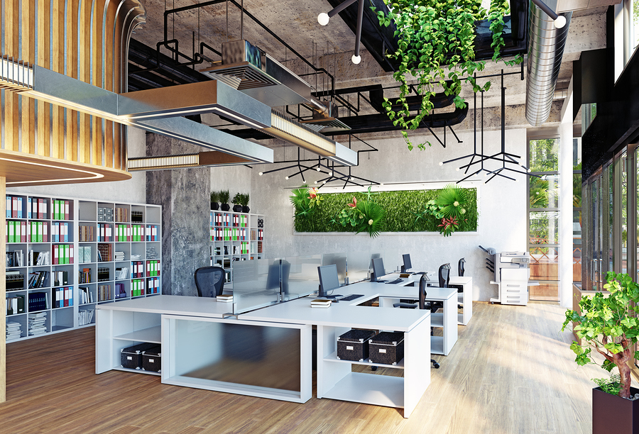 Biophilic Design in the Office Space
